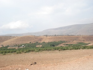 Palestinian farms north of Nablus