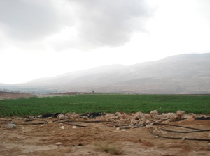Palestinian farm north of Nablus
