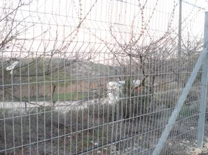 beit zakariya's farm land imprisoned