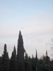 itf helicopter surveillance above al quds