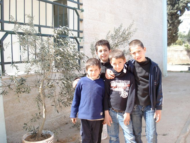 aqraba boys next to olive trees to be planted in the valley
