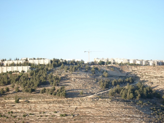 gilo colony with building crane in center