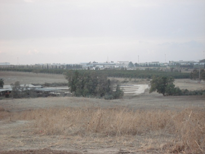 nestle in the distance on the land of najd, palestine