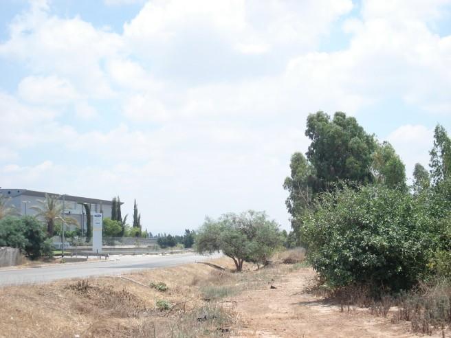 ford motor company in occupied sarafand al 'amar, palestine