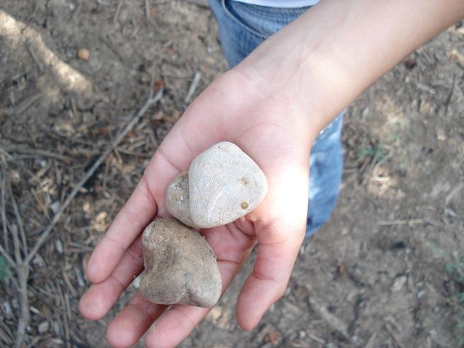 stones of qastina, palestine