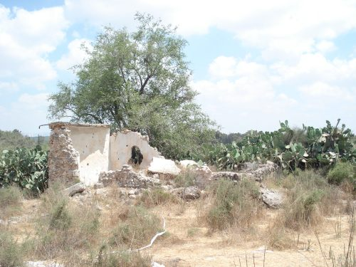 destroyed palestinian home in khirbat al qubeiba
